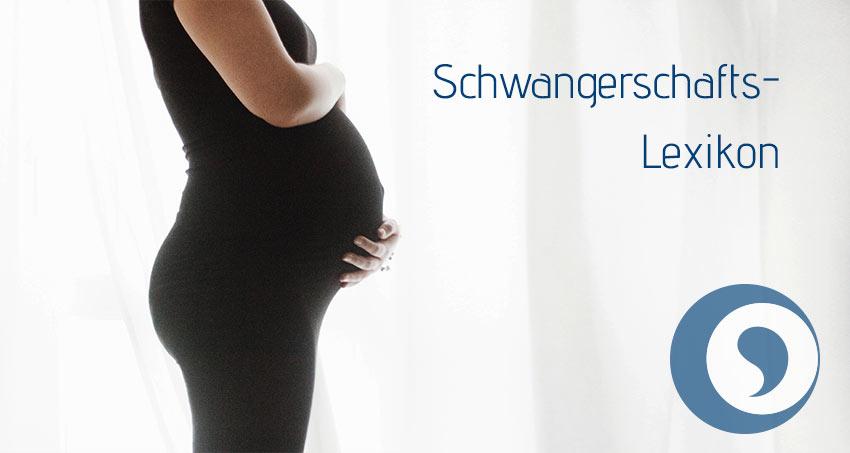 Schwangerschafts Lexikon